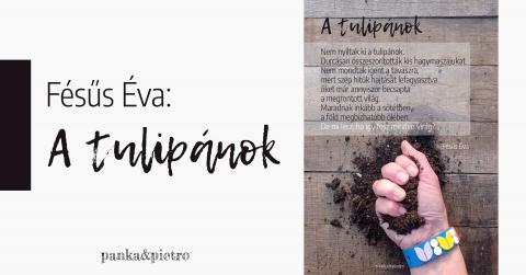 Fésűs Éva: A tulipánok vers panka&pietro